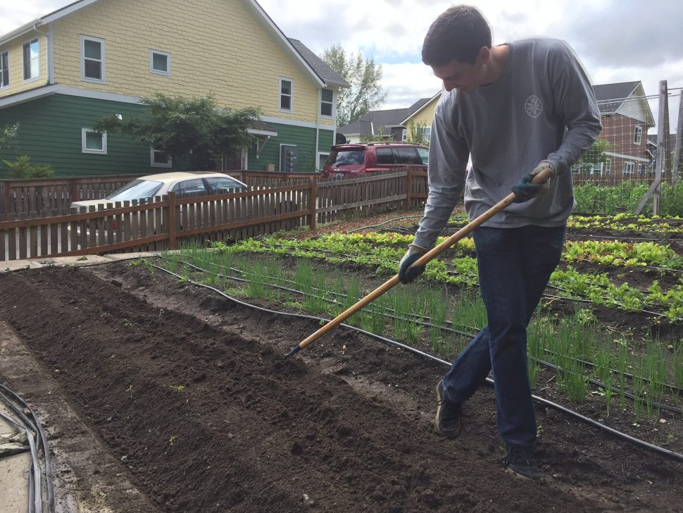 Wheelhouse Generosity Day - Solid Ground Community Farm